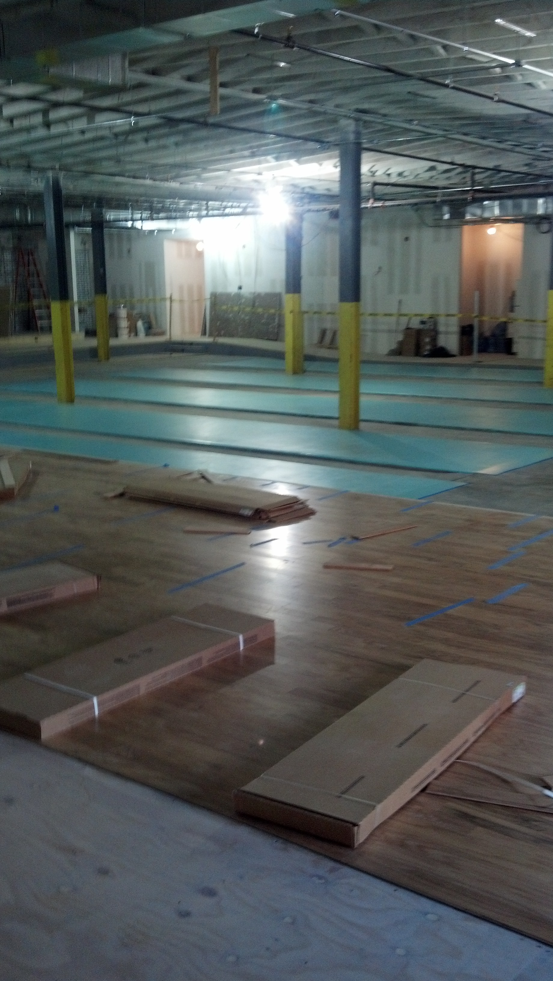 Shuffleboard Painting 727 804 2980 Free Estimate Services